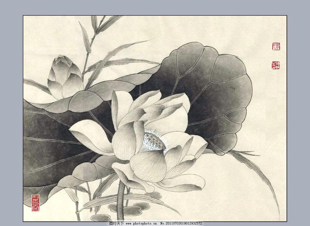 工笔荷花 美术 绘画 中国画图片
