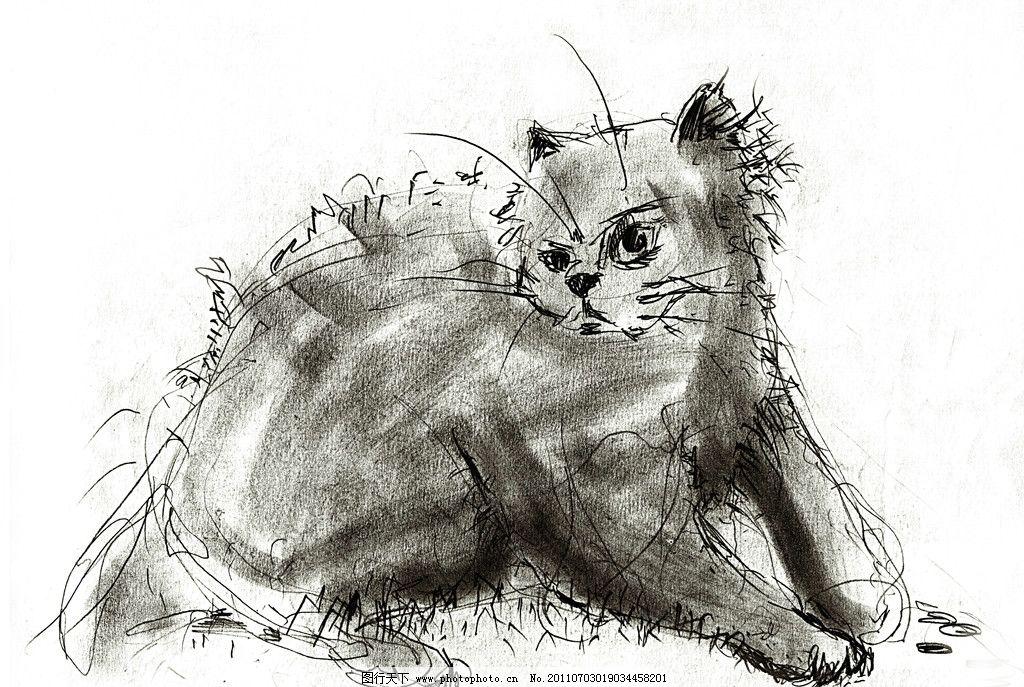 用素描画可爱的小猫
