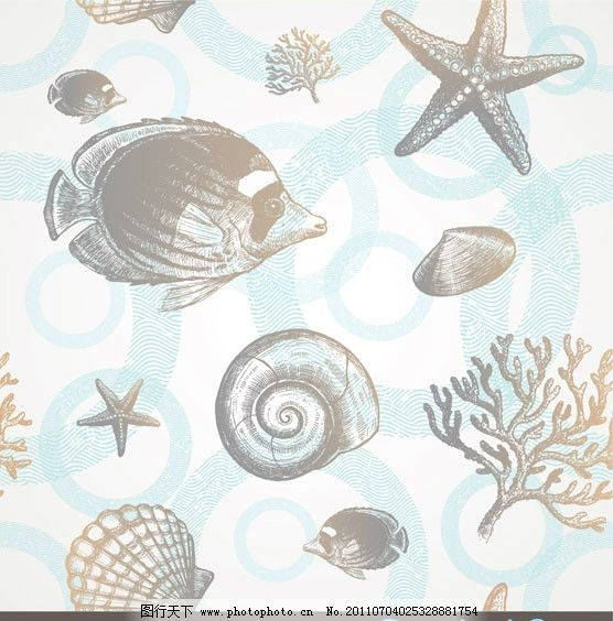 手绘素描海洋生物 热带鱼 海星 海螺 贝壳 牡蛎 珊瑚 动感 线条