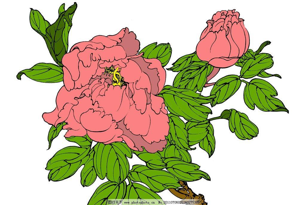 牡丹 花卉 白描 设计 图案 花样 线描 设计纹样 底纹 国画 工笔画