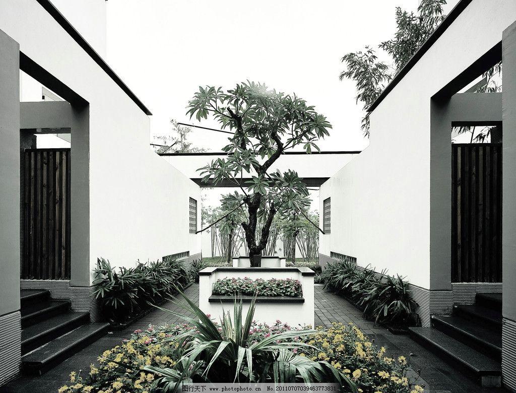 中式别墅 中式风格 中式院墙 院落 院子 景观 树木 盆景 意境