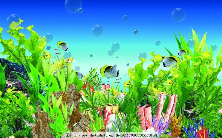 水族箱海底世界图片