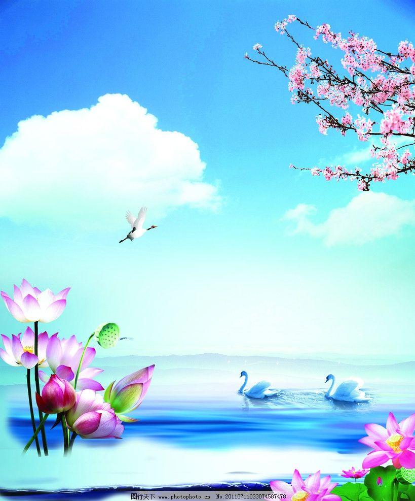风景画 蓝天白云 海鸥 天鹅 梅花 大海 荷花 荷叶 psd分层素材 源文件