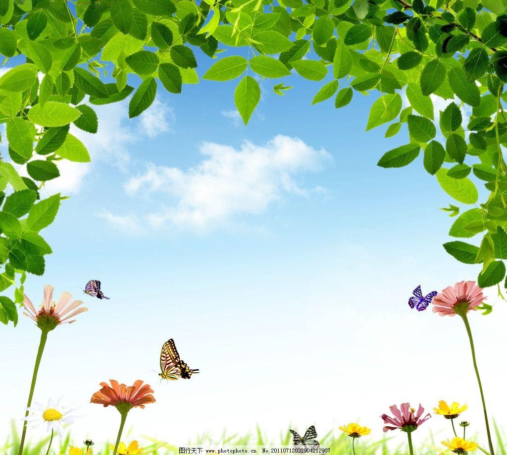 春天 背景 绿叶 蓝天 白云 花朵 蝴蝶 小雏菊 风景 300分辨率 分层