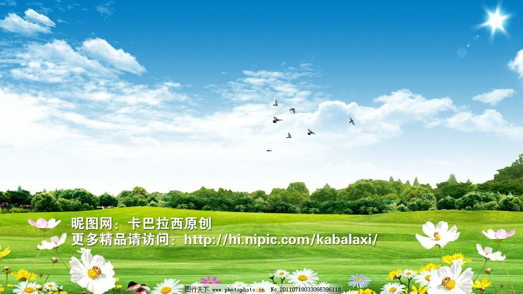 蓝天白云 风景 草地 蓝天 绿草地 太阳 树木 树林 花园 草 树叶 菊花