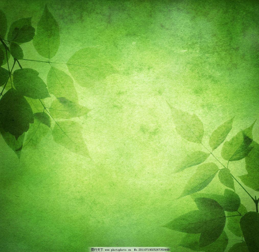 高清绿色背景图片_树木树叶_生物世界_图行天下图库
