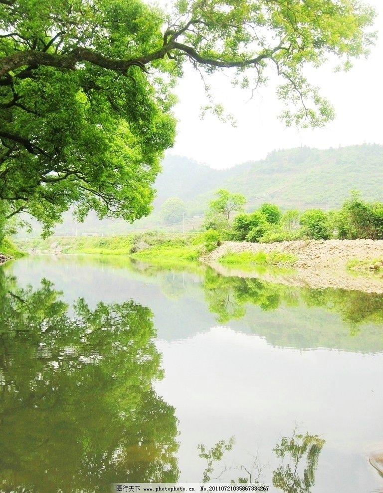绿树 绿叶 树木 小树 大树 树 倒影 流水 小河 石头 山石 远山 世外桃