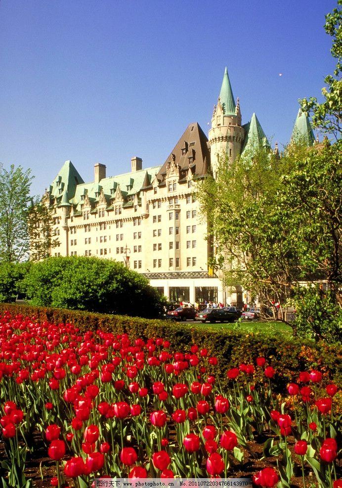 世界建筑 欧式 欧式建筑 欧洲 花 玫瑰花 户外 公园 绿化 景观