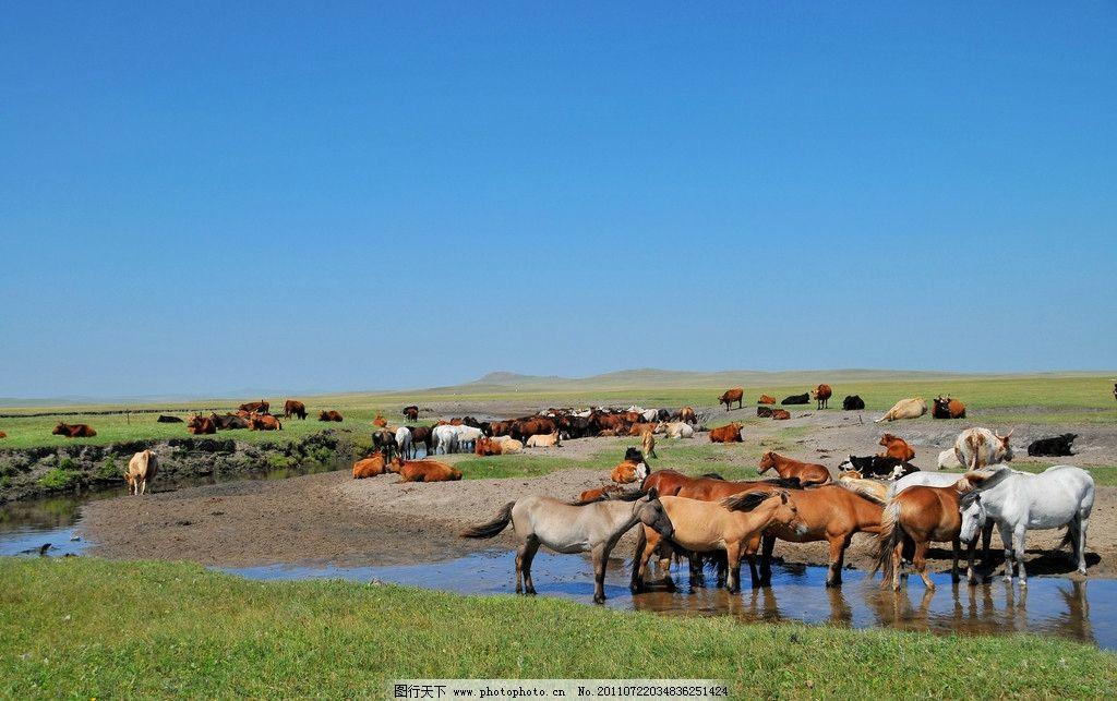 原生态 草地 蒙古草原 蒙古风光 旅游摄影 摄影300dpi jpg 自然风景