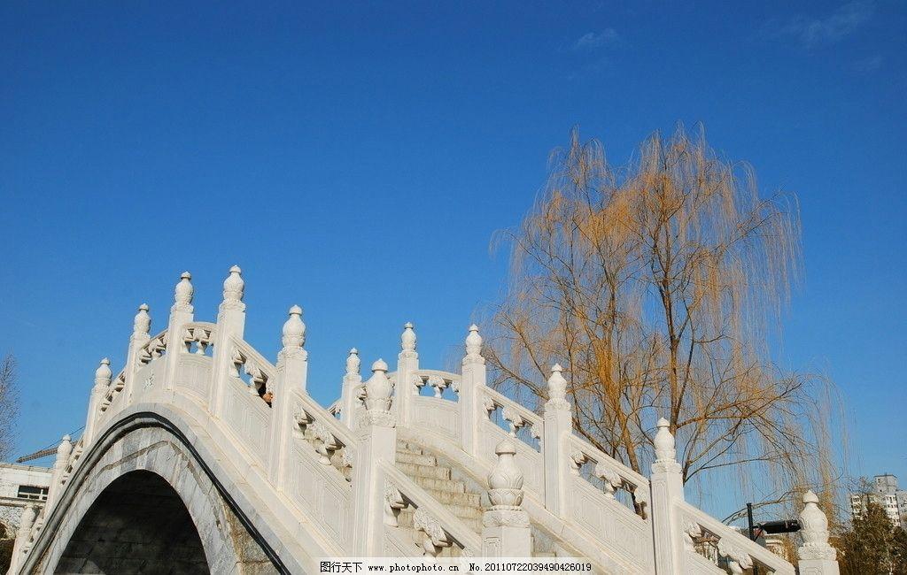 拱桥 自然风景 蔚蓝天空 天空 枯树 树枝 桥洞 弯曲 旅游 宁静 自然