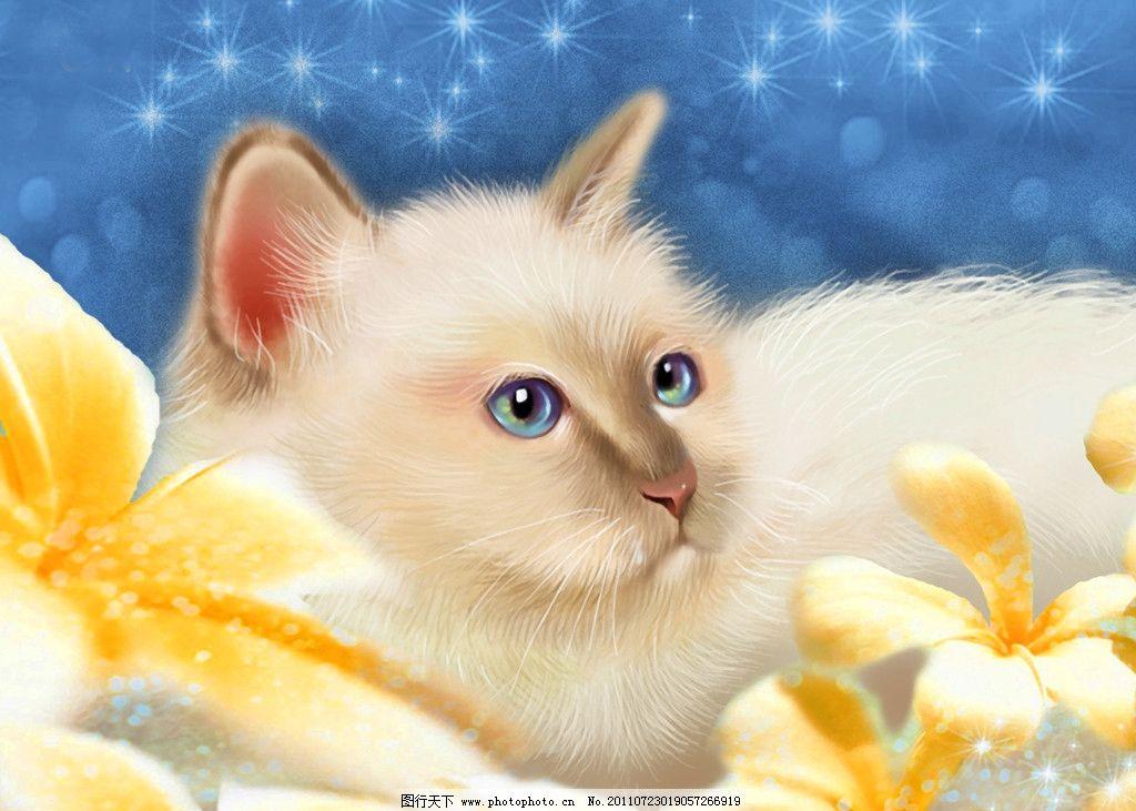 猫咪 插图 卡通 可爱 手绘 花朵 绘画书法 文化艺术