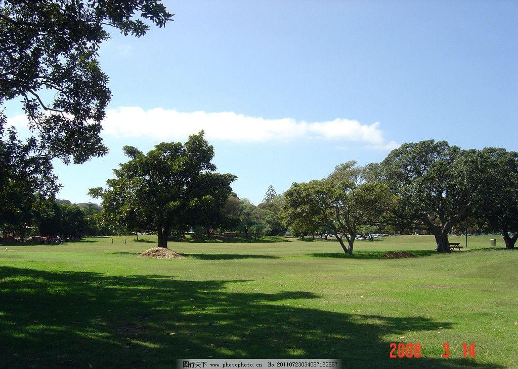 英式公园 澳洲 英式 公园 草地 大树 国外旅游 旅游摄影 摄影 72dpi j