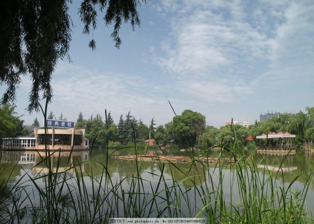 玉溪聂耳公园一角图片,聂耳公园风景 绿树 蓝天 白云