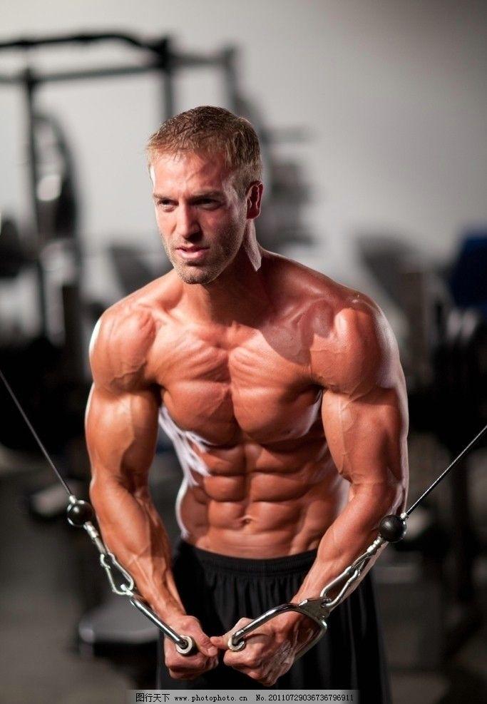 健美男体 健身 健体 健壮 运动员 胸肌 腹肌 二头肌 三头肌