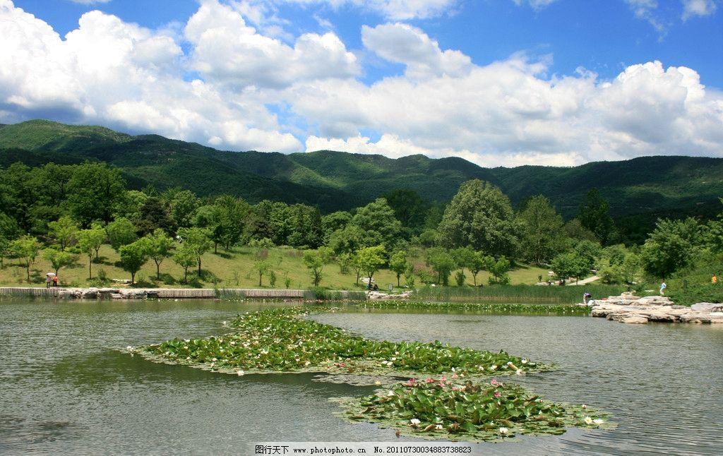 青山绿水 青山 绿水 蓝天 白云 绿树 倒影 睡莲 自然风景 自然景观