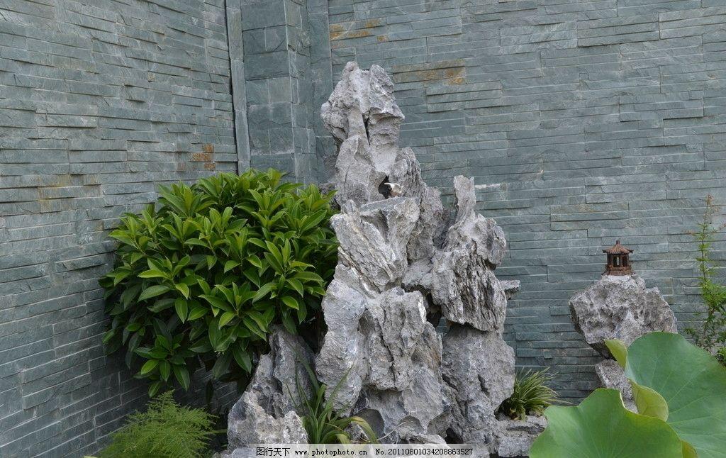假山水池图图片