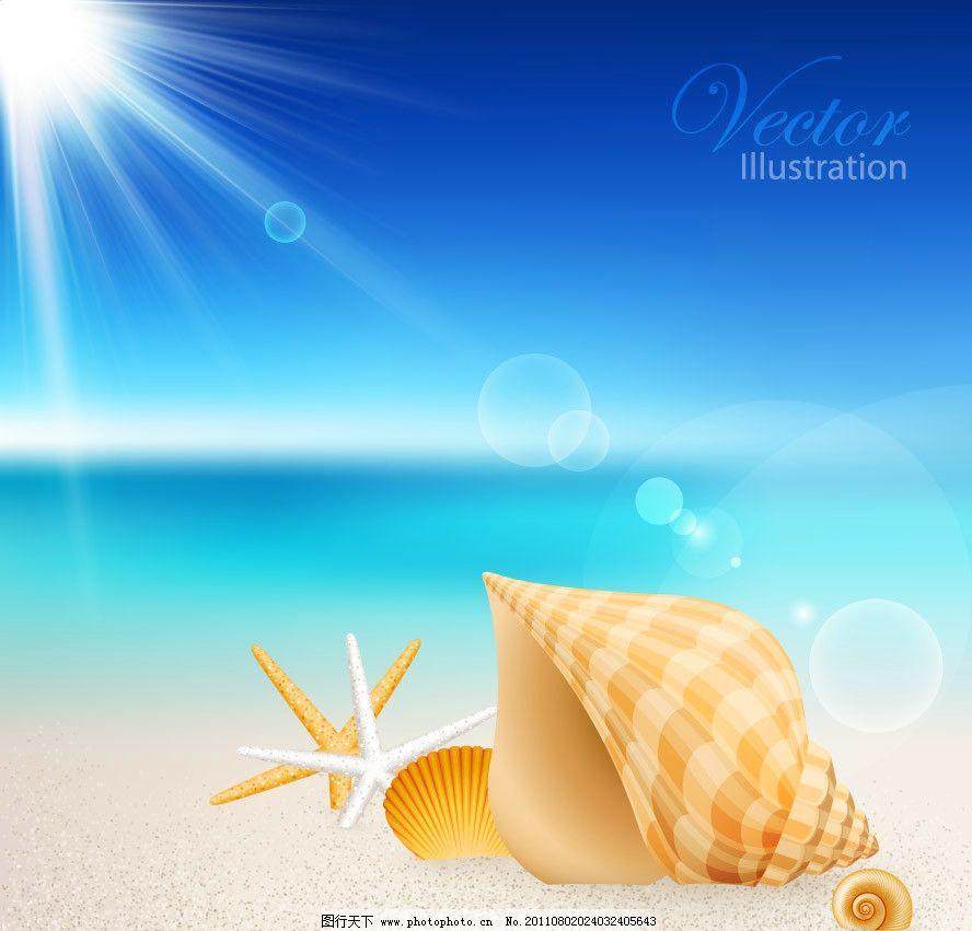 蓝天阳光下的沙滩海洋生物图片