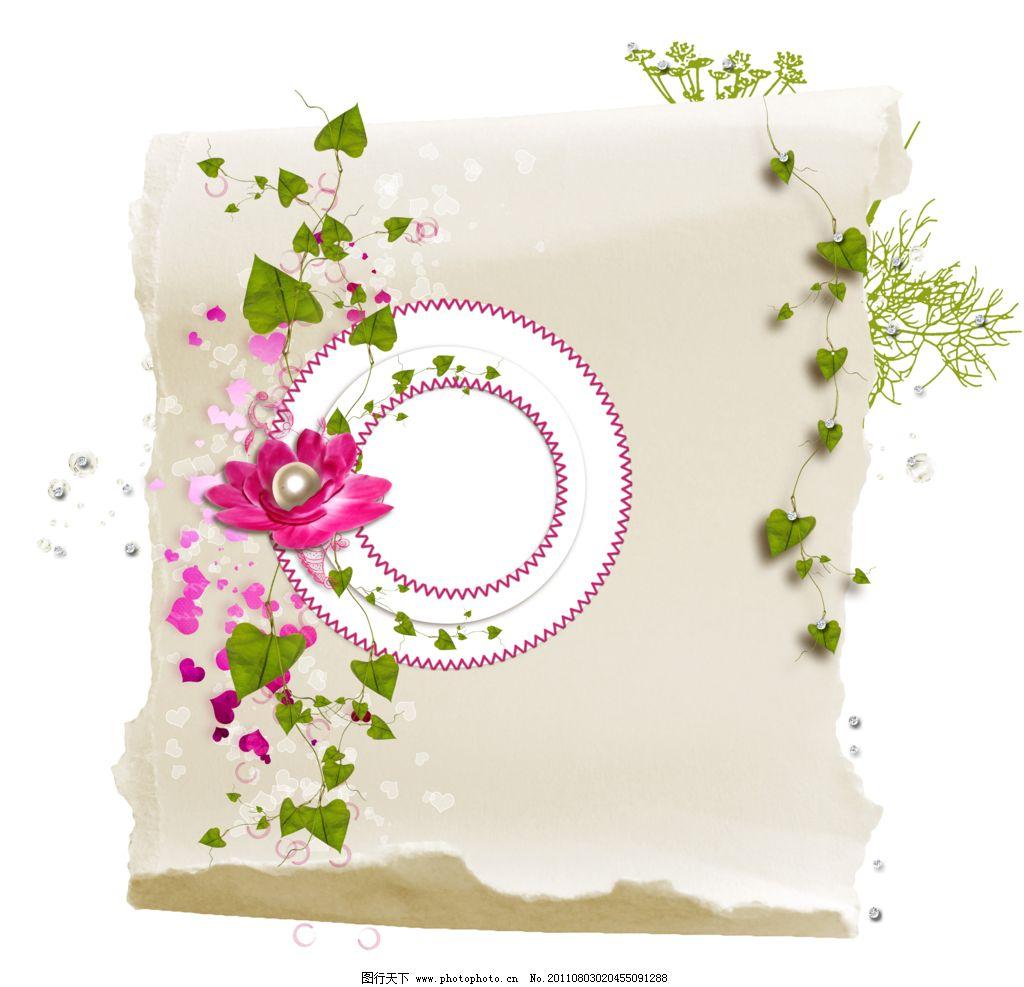 花朵花纹花藤相框背景图片