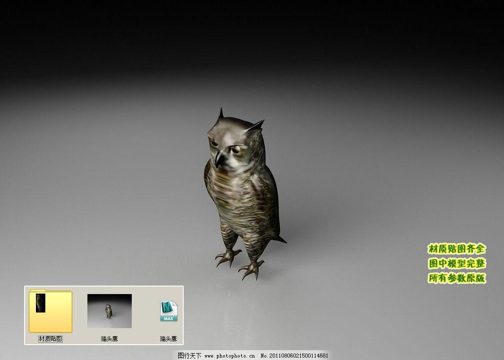 动物 飞行类 生物 飞禽 3d模型 三维模型 三维建模 3d建模 动物模型