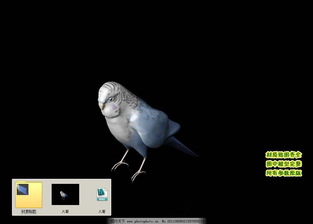 飞鸟 动物 飞行类 生物 飞禽 3d模型 三维模型 三维建模 3d建模 动物