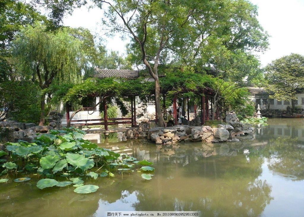 植物 灌木 花卉 树木 景观设计 旅游拍摄 植物园 走廊 过道 连廊 庭院