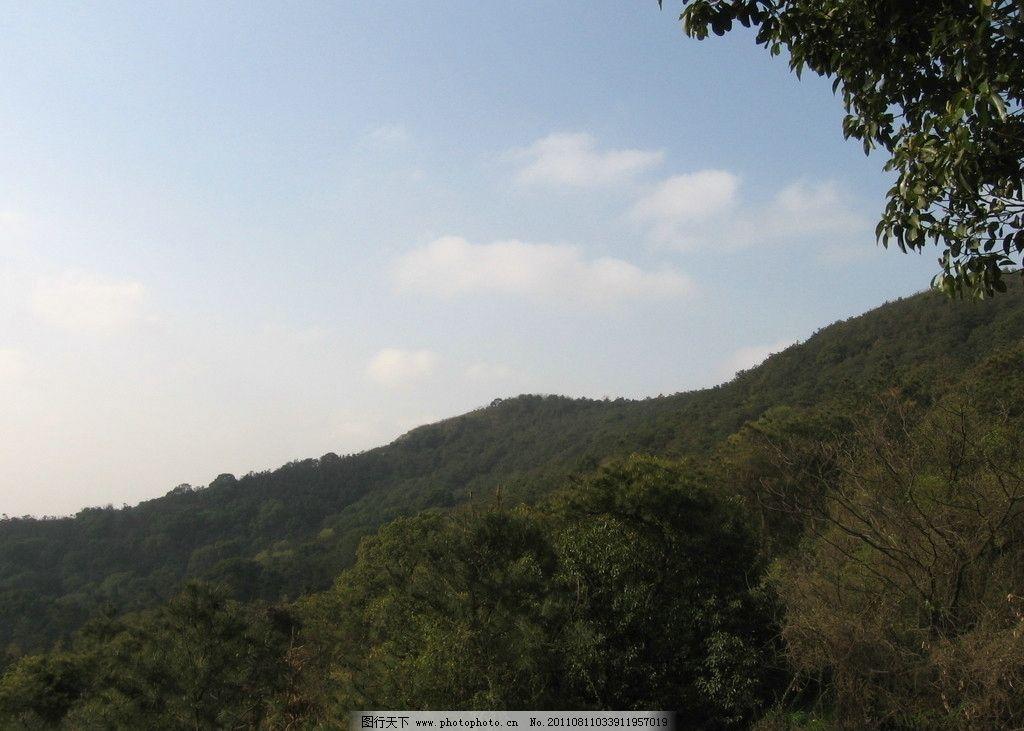 香山 苏州 香山风景区 晨曦 树林 天空 朝霞 蓝天 国内旅游 旅游摄影