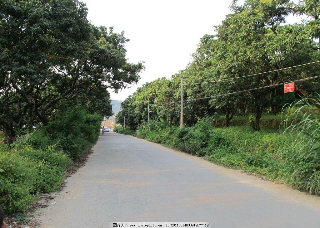 乡村公路 公路 道路 水泥路