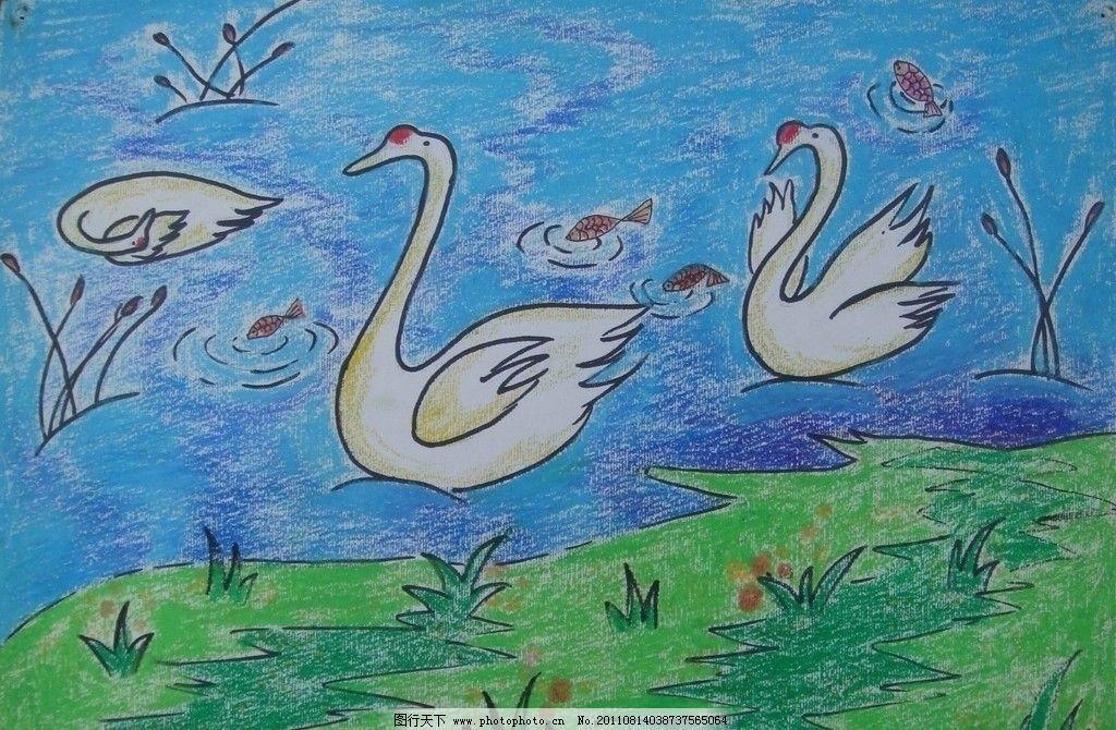 天鹅戏水 小鱼 水草 儿童画 卡通画 美术绘画 文化艺术 摄影 72dpi jp