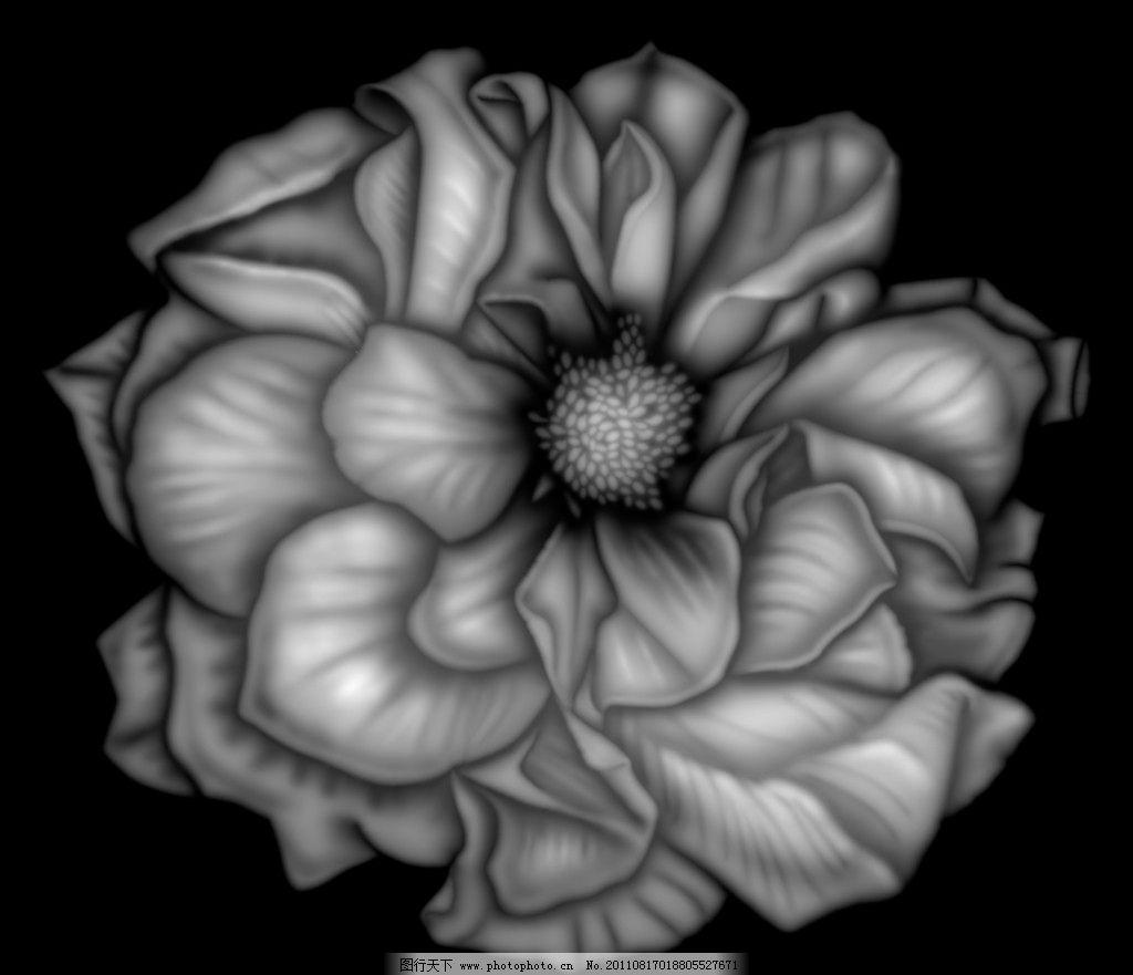 玫瑰花浮雕灰度图图片
