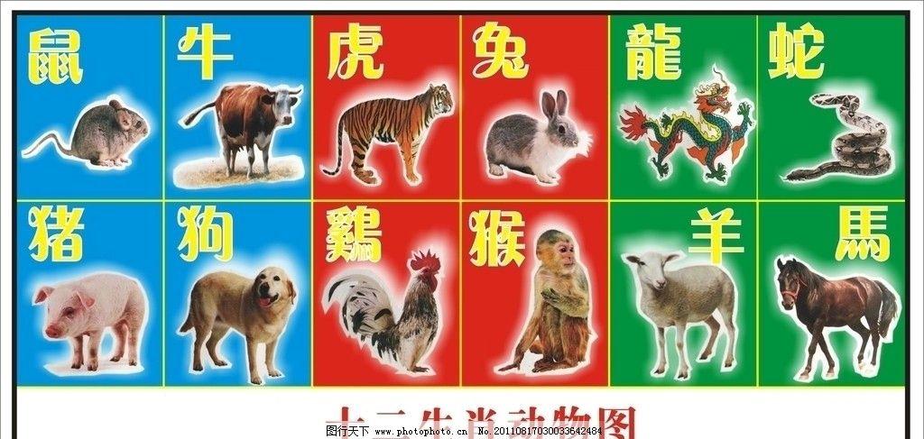 十二生肖动物图图片_海报设计