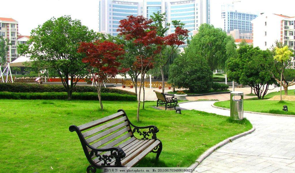 公园 园林 草地 绿地 草坪 树木 树丛 石板路 椅子 木椅 生态公园
