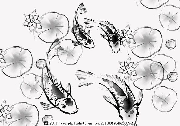 荷花池塘简笔画鱼儿 赤峰宁城老照片