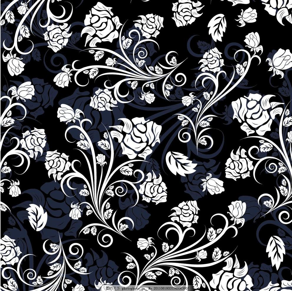 欧式花纹 黑底白色花纹 花卉 欧式边框 欧式花边 欧式复古花纹背景