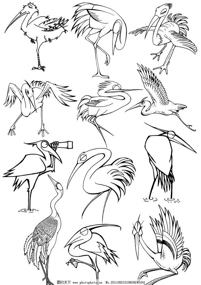 手绘 线稿 鸟 鹤 丹顶鹤 水鸟 动物线稿 手绘线稿 黑白插画 可爱 卡通