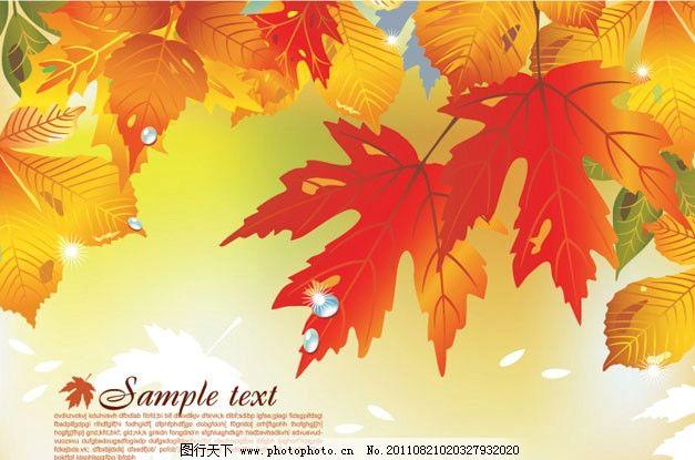 秋天枫叶树叶 秋天 秋季