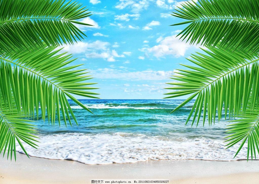 海岸 度假 海边 大海 蔚蓝 风景 美景 蓝天 白云 沙滩 椰子树 清澈