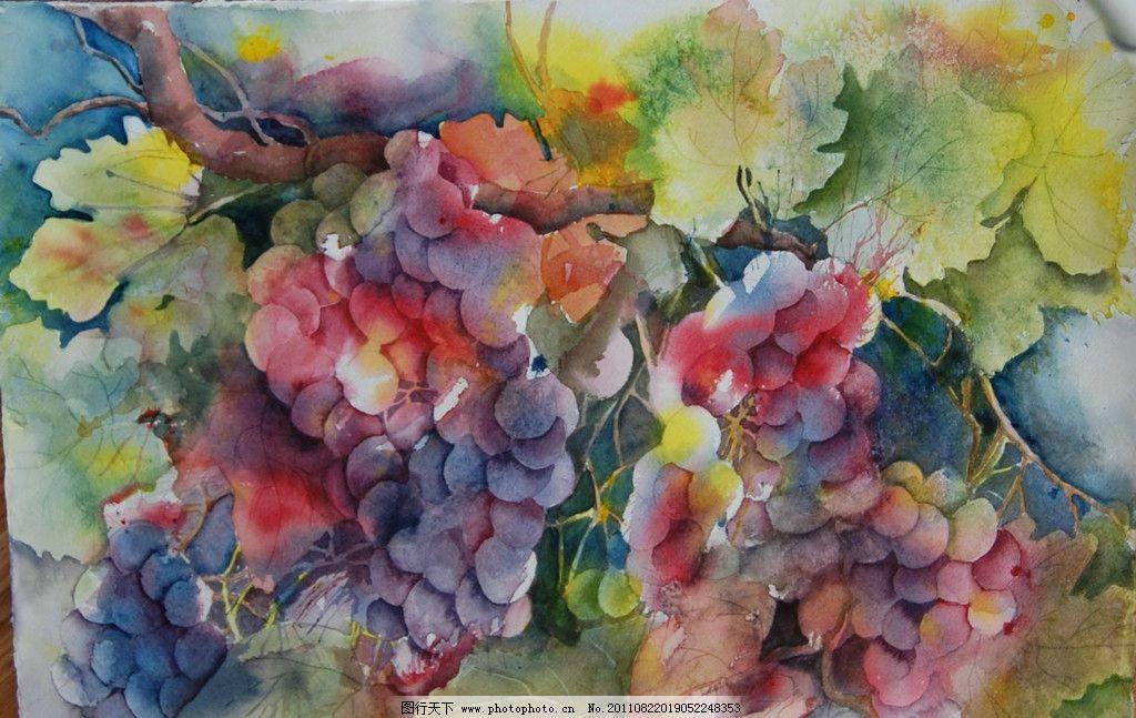 葡萄水彩图片