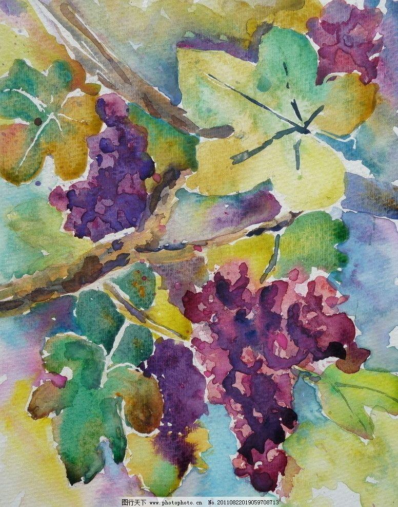 水彩葡萄画图片