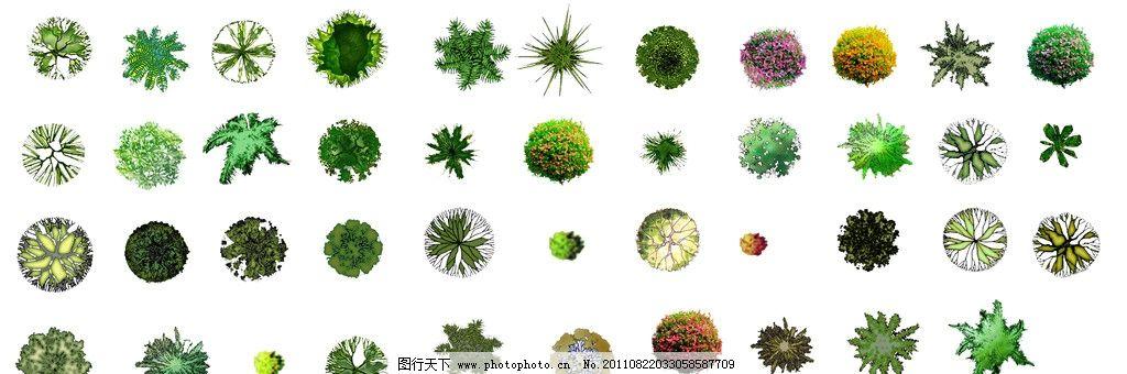 植物平面图 植物景观平面布置图 景观设计 灌木 景观平面图 园林植物