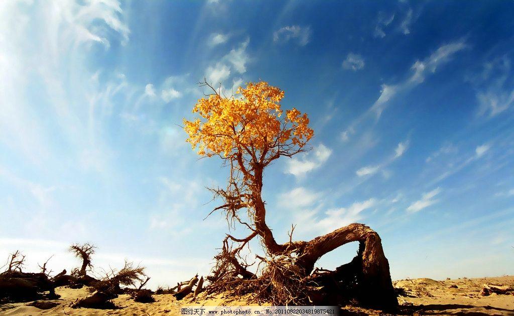 设计图库 自然景观 自然风景    上传: 2011-8-22 大小: 2.