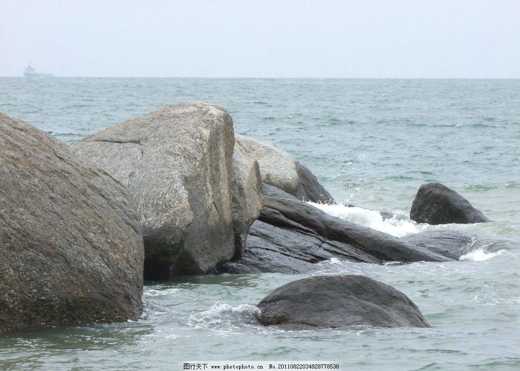 海边的动物图片牙齿