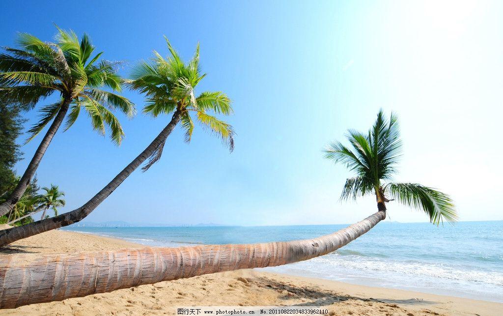 海南沙滩 海南三亚湾沙滩 三亚湾 沙滩 沙子 椰子树 海滩 海水 海边