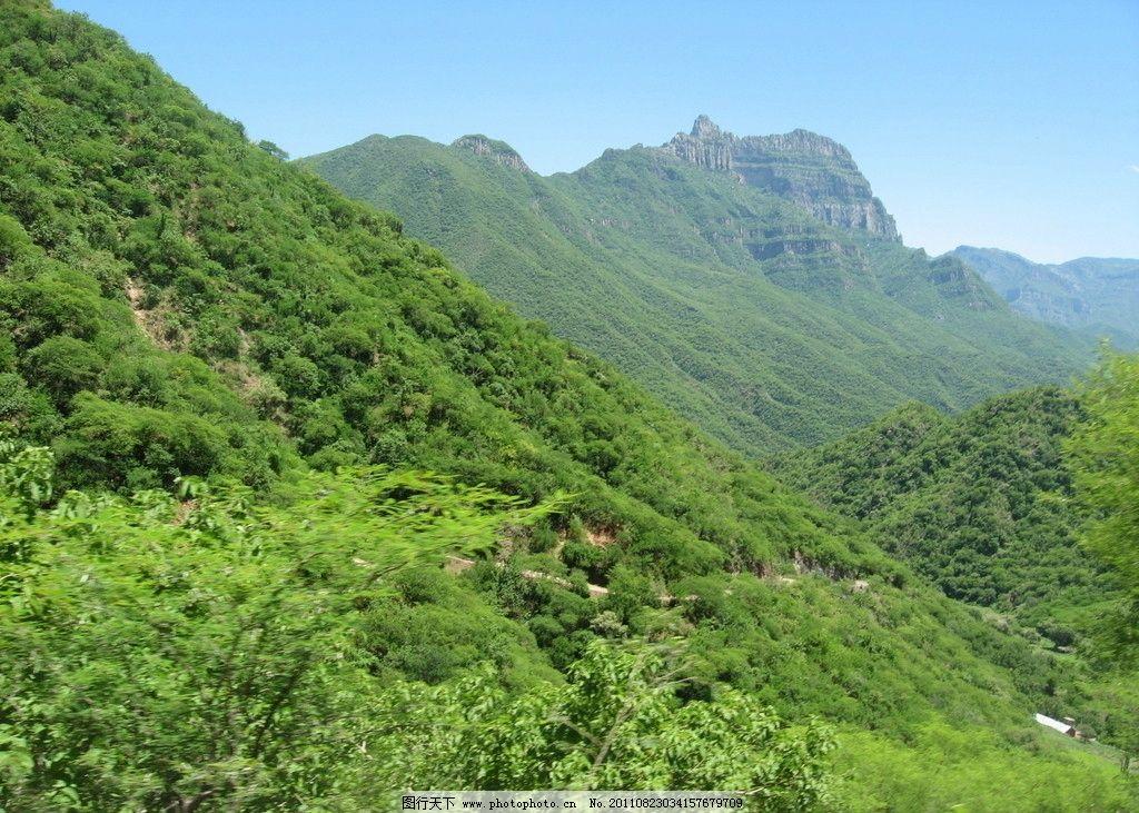 山林 大自然 原始森林 生态环境 风光 自然风景 旅游摄影 摄影 180dpi