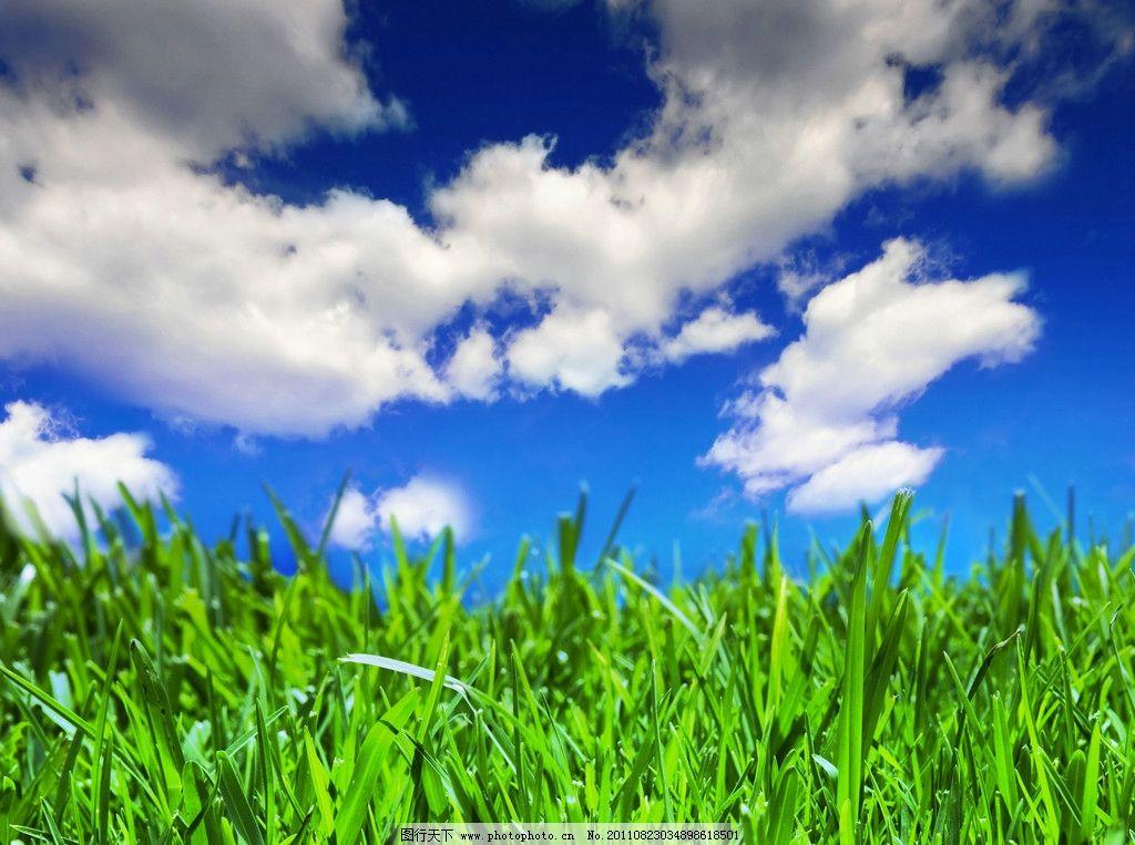 蓝天白云绿野草地图片