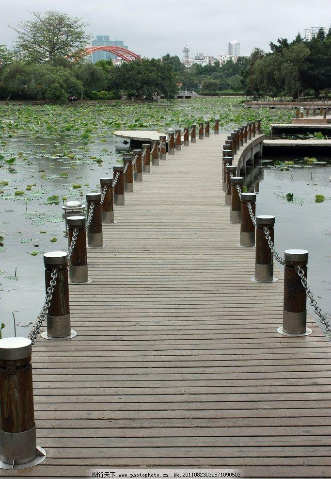 小道 木板 木墩 路面 池塘 荷叶 纵深 园林建筑 建筑园林 摄影