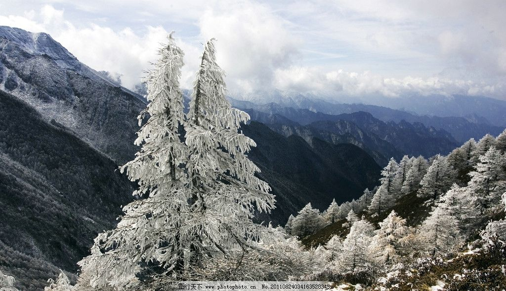 森林的冬天 冰雪 大山 蓝天 白云 树林 松树 自然风景 旅游摄影 摄影