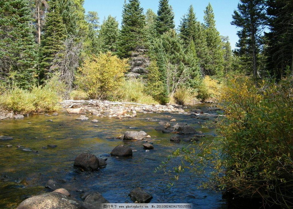 森林小溪 小溪 树林 石头 大自然 自然风景 自然景观 摄影 72dpi jpg