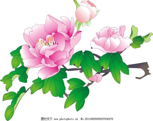 粉色 牡丹花 素材 牡丹花 粉色 矢量 素材 矢量图 花纹花边