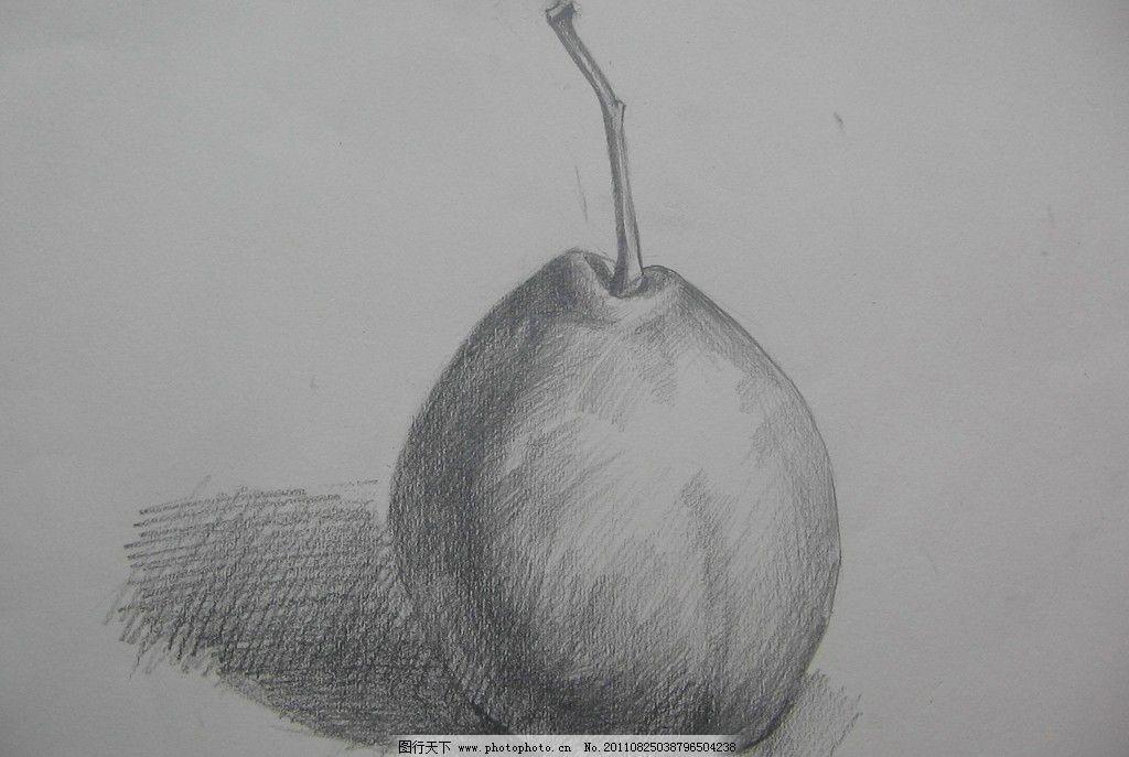 水果静物素描 梨子 美术绘画 文化艺术 摄影 180dpi jpg
