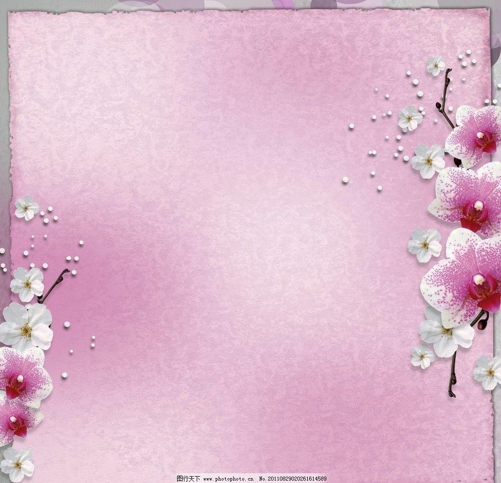 花卉边框 桃花 花朵 鲜花 美丽 花草 背景底纹 底纹边框